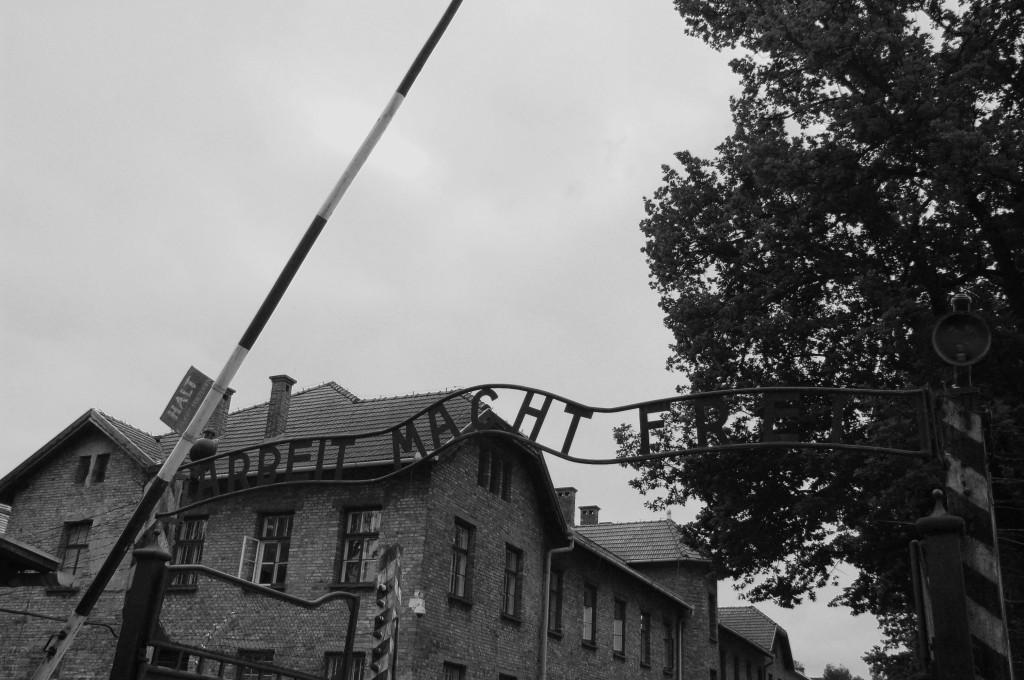 Auschwitz 1 (1)