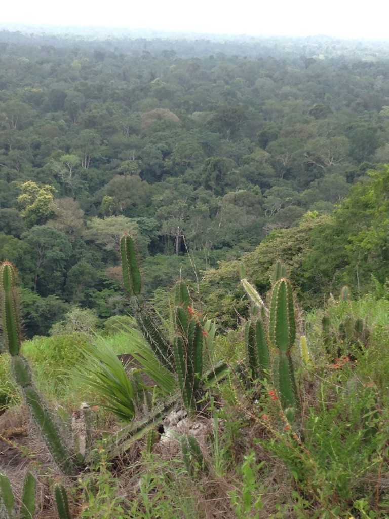 Uitzicht vanaf Okohill Kajana Suriname