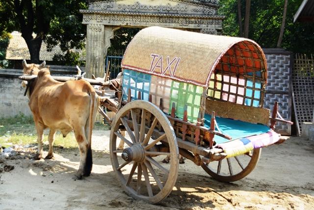 Ossen taxi