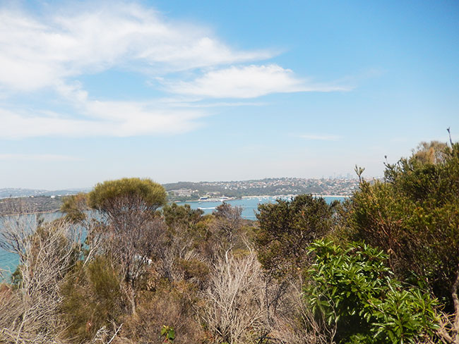 Walk-Manly4
