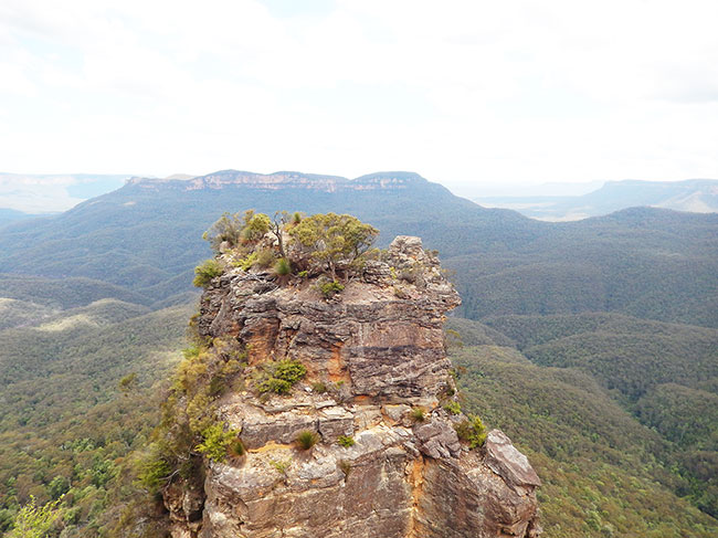 Blue-Mountains-3
