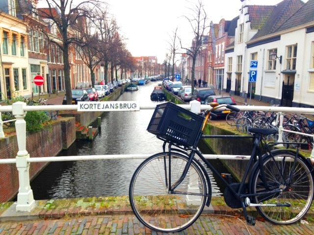 De grachten van Haarlem