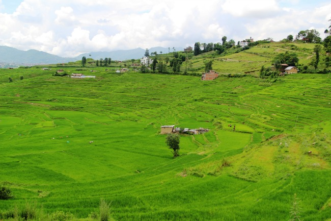 Onderweg Nepal
