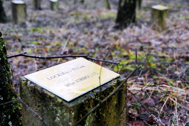 Le Bois de la Paix. Het Vredesbos dat is opgedragen aan de Belgische en geallieerde strijders