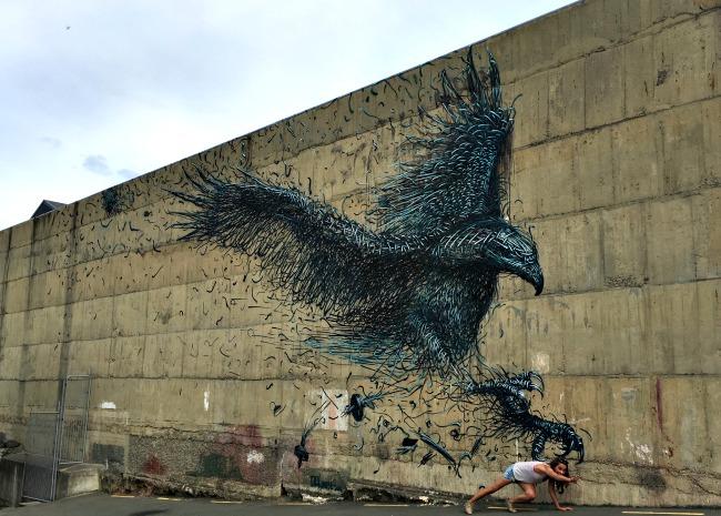50 Dunedin Streetart