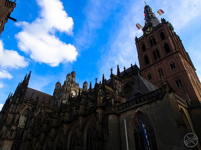 Sint Jans Kathedraal in Den Bosch