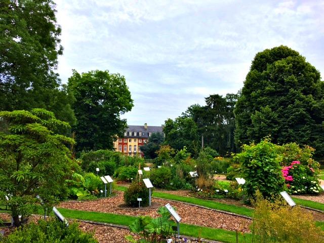 Botanische tuin Munster