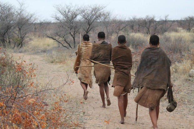 Lokale stammen
