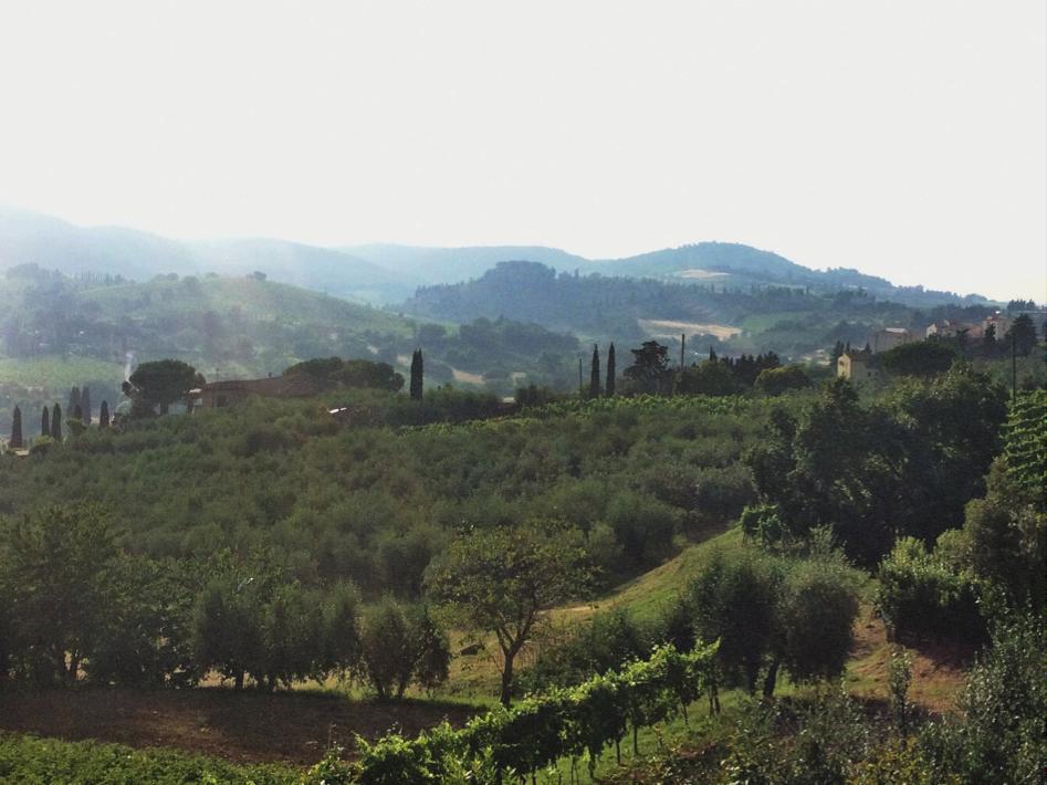 Uitzicht over de Toscaanse heuvels met de karakteristieke cipressen