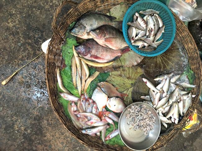 9-cambodja-lokale-markt