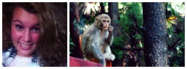 werelddierendag-2016-anne-floor-collage