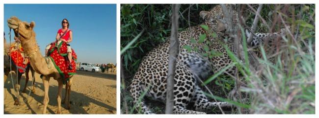 werelddierendag-2016-ellie