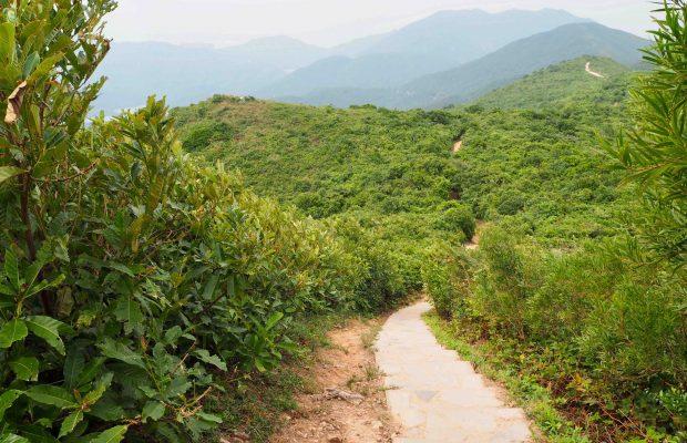 Hiken in Hong Kong