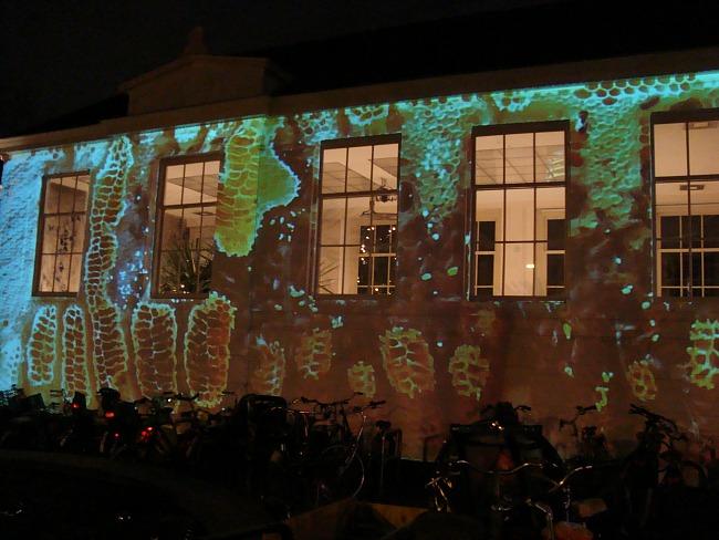 Kijk naar de fascinerende projectie bij de ingang van Hortus Botanicus