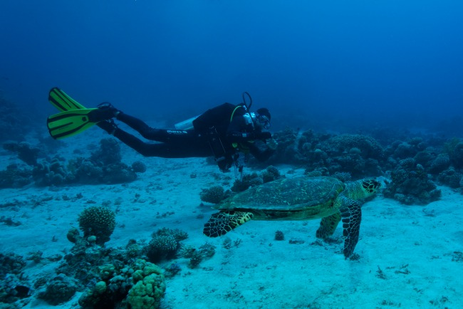 aqaba-duiken