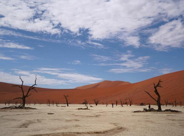 Dead Vlei Namibie