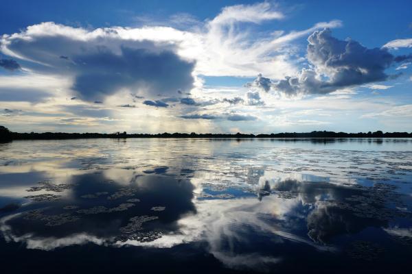 Okavango Delta Namibie