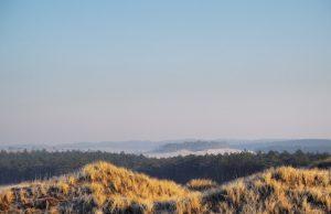 Uitzicht over de duinen van Egmond tijdens wandelen in Nederland