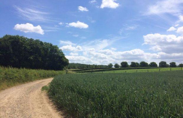 Wandelen in Zuid-Limburg