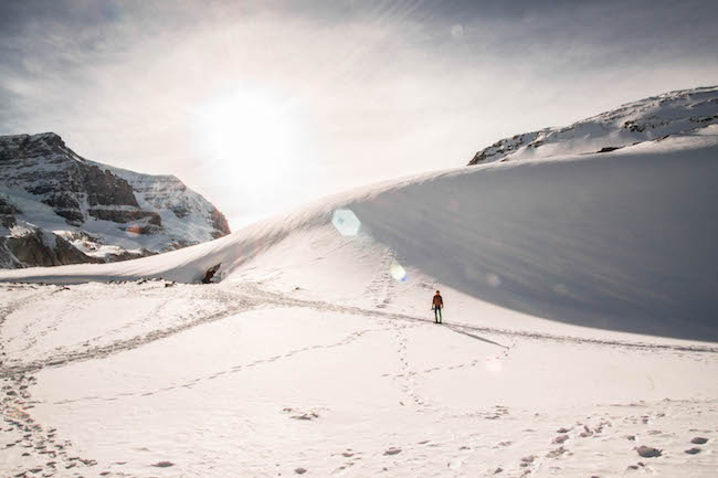 Droge poedersneeuw op de pistes van Marmot Basin tijdens een wintersport in Canada