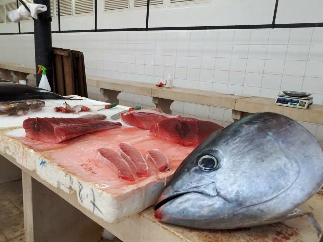 Bezoek de vismarkt van Split