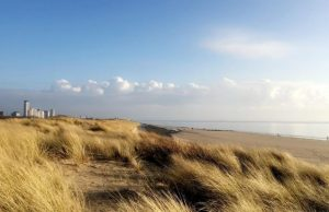Duinen en strand Vlissingen
