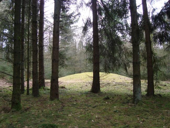 Passeer grafheuvels in het Hunzedal