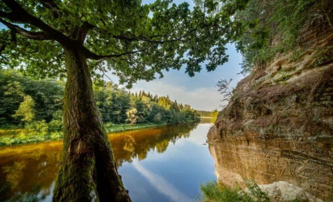 Gauja letland