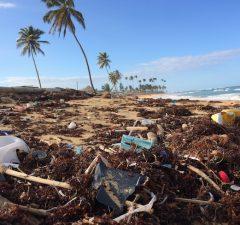 World Oceans Day - 5x simpele manieren om minder plastic te gebruiken op reis