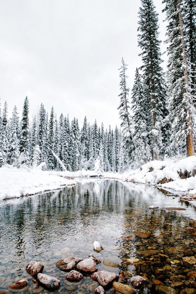 Stedentrip naar Edmonton en wintersportvakantie naar Jasper & Marmot Basin