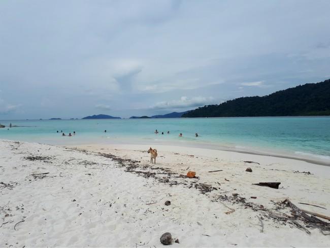 Ga zwemmen bij de noordoost punt van Sunrise Beach