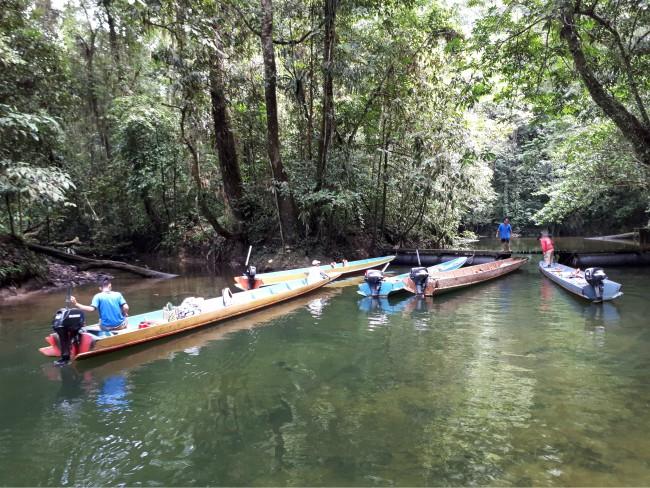 Geniet van een tochtje per longboat naar de grot