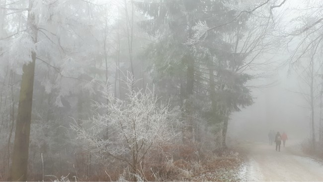 Winter wandelen op Uetliberg
